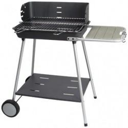 Barbecue fonte à charbon...