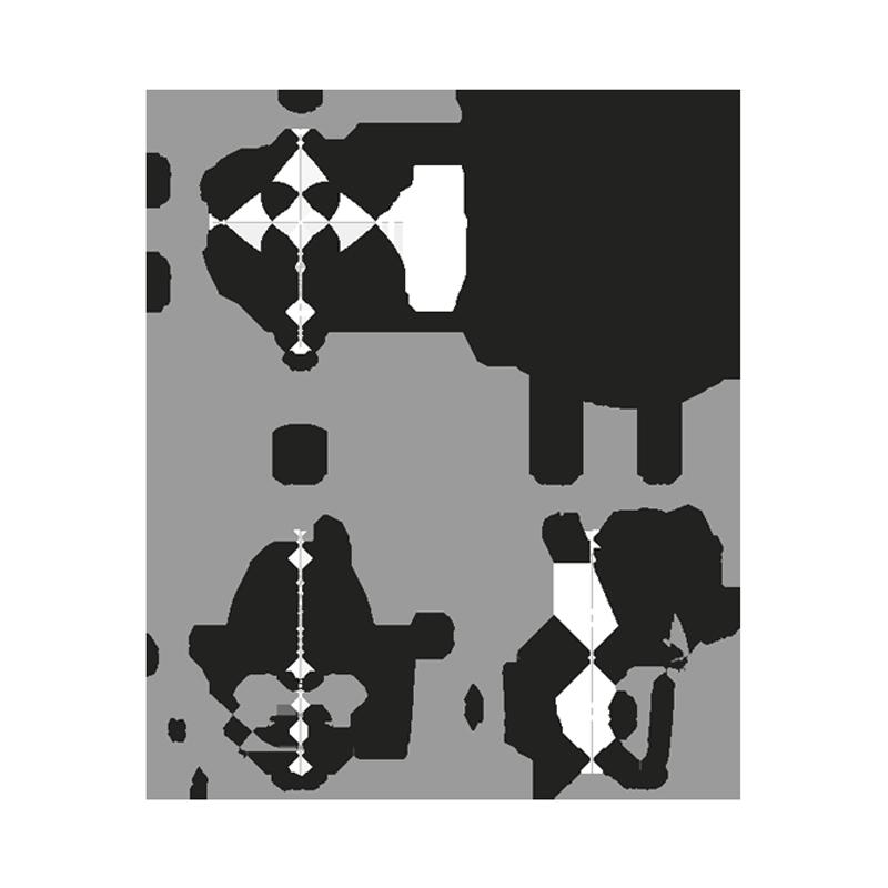 Mini - Livraison Janvier 2022