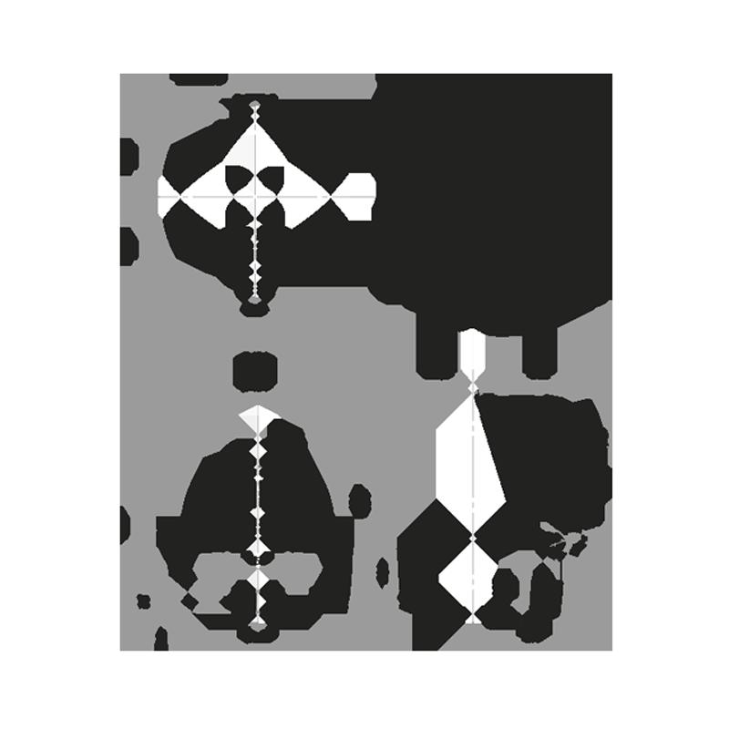 MiniMax - Livraison août 2021